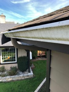 Gutter cleaning - before photo